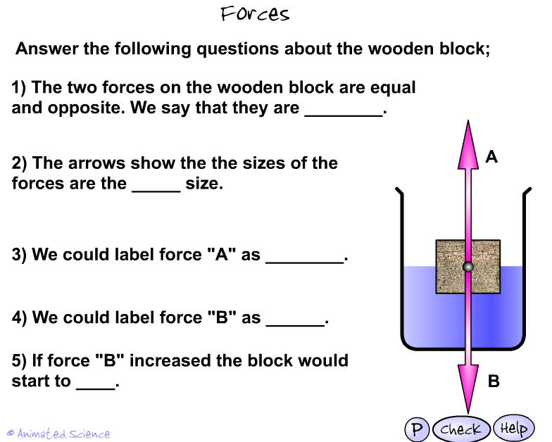 KS3 Forces and Pressure – Animated Science